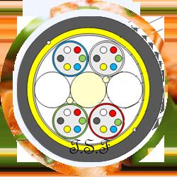 OCUC-SM_CIRCLE